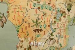 Schulwandkarte Role Map Africa Bodennutzung Extension Jro 911 Geography Wall Map